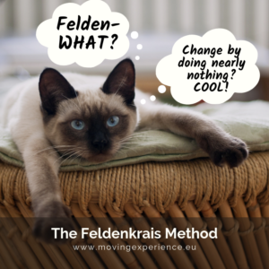 """A cat lying down thinking """"Felden-WHAT? and """"Change by doing nearly nothing? Cool!"""" with the caption The Feldenkrais Method"""